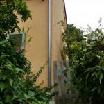 Peinture de façade au silicate BEECK